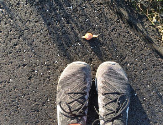 Buty biegowe i ślimak